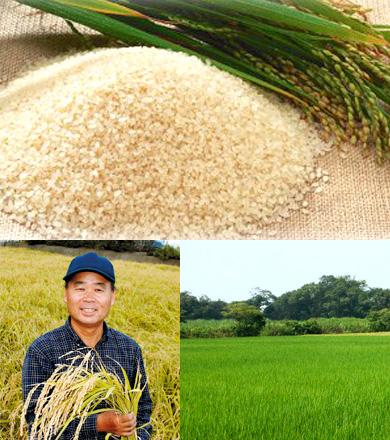 浅羽産の「もち米」